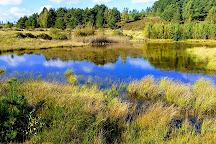 Hoge Kempen National Park, Genk, Belgium