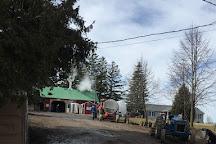 Shady Grove Maple Co., Guelph, Canada