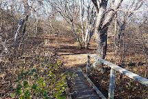 Fort Getty Park, Jamestown, United States
