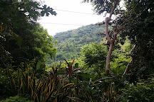 La Union Botanical Garden, San Fernando La Union, Philippines