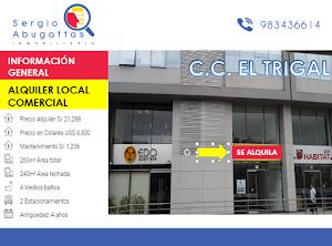 Sergio Abugattas Inmobiliaria 1