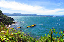 Matiu / Somes Island, Wellington, New Zealand