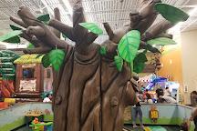 Little Java's Family Fun Center, Weston, United States