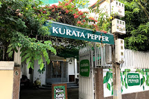 Kurata Pepper, Phnom Penh, Cambodia