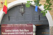 Central Baia Mare Art Museum, Baia Mare, Romania