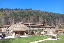 Moulin des Massons, Saint-Bonnet-le-Courreau, France