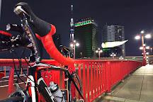 Azuma Bridge, Tokyo Prefecture, Japan