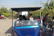 Machia Biological Park, Jodhpur, India