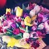 Ваши цветы, улица Георгия Димитрова, дом 129 на фото Самары