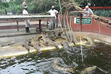 Crocodile Centre St Lucia, St Lucia, South Africa