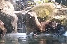 Sequoia Park Zoo, Eureka, United States