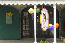 From the Gecko Boutique, Christiansted, U.S. Virgin Islands