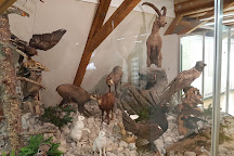 Allgau-Museum, Kempten, Germany