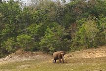 Periyar Tiger Reserve, Thekkady, India