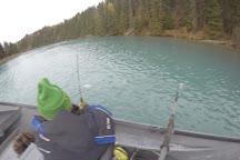 Cooper Landing Fishing Guide, Cooper Landing, United States
