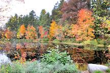 Samuel de Champlain Provincial Park, Mattawa, Canada