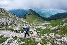 Wildlife Adventures, Pescasseroli, Italy
