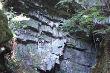 Cueva El Pendo, Escobedo de Camargo, Spain