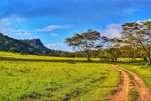 Lake Nakuru, Lake Nakuru National Park, Kenya