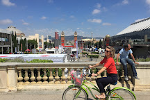 Cruising Barcelona Bike Tours, Barcelona, Spain