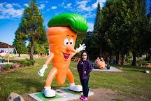 Ohakune Carrot Adventure Park, Ohakune, New Zealand