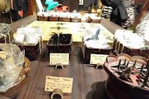 Ninja Dojo and Store, Kyoto, Japan