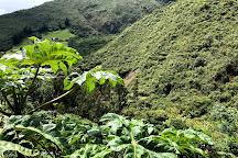 Cotacachi-Cayapas Ecological Reserve, Ecuador