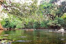 Black River Gorges National Park, Mauritius