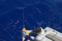 Hunt Fish Kauai, Koloa, United States