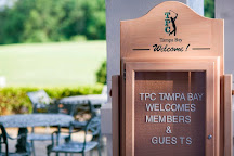 TPC Tampa Bay, Lutz, United States
