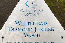 Diamond Jubilee Wood, Whitehead, United Kingdom