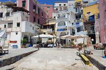 The Port of Corricella, Procida, Italy