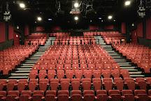 Millfield Theatre, London, United Kingdom