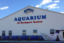 Aquarium at Rockport Harbor, Rockport, United States