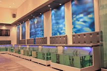 Doctor Fish Athens - Day Spa & Nail Bar, Athens, Greece