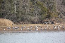 Hiwassee Wildlife Refuge, Birchwood, United States