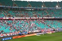Itaipava Arena Fonte Nova, Salvador, Brazil