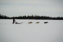 Due North Safaris, Akaslompolo, Finland