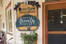 Temecula Olive Oil Company, Temecula, United States