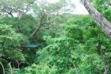 Pinilla Canopy Tour, Pinilla, Costa Rica