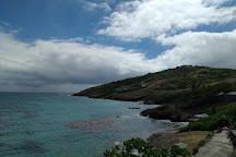 Mamora Bay Divers, Antigua, Antigua and Barbuda