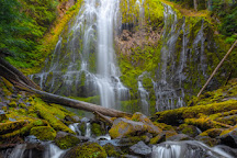 Proxy Falls, Sisters, United States