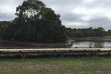 Wonthaggi Wetlands Reserve, Wonthaggi, Australia