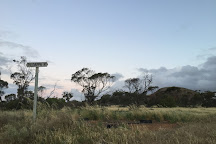 Pildappa Rock, Minnipa, Australia