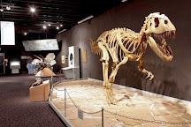 Mesalands Community College's Dinosaur Museum and Natural Sciences Laboratory, Tucumcari, United States