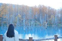 Blue Pond, Biei-cho, Japan