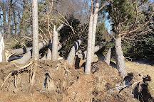 Sherburne National Wildlife Refuge, Zimmerman, United States