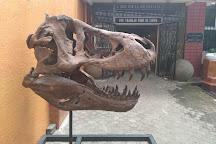 Museo de Ciencias Naturales La Salle, San Jose, Costa Rica
