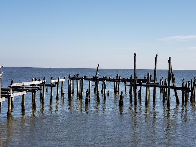 Cedar Key Fishing Pier