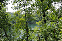 Lakeside Forest Wilderness Area, Branson, United States